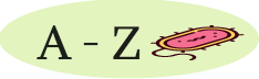 A – Z on Lyme Disease