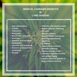 benefits of medical cannabis for lyme disease
